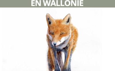 Het Collectif Stop aux Dérives de la Chasse publiceert een Witboek! (FR)