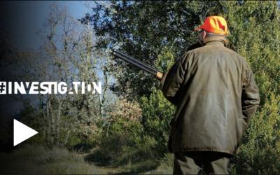 De jacht, het gewicht van het geweer (FR)