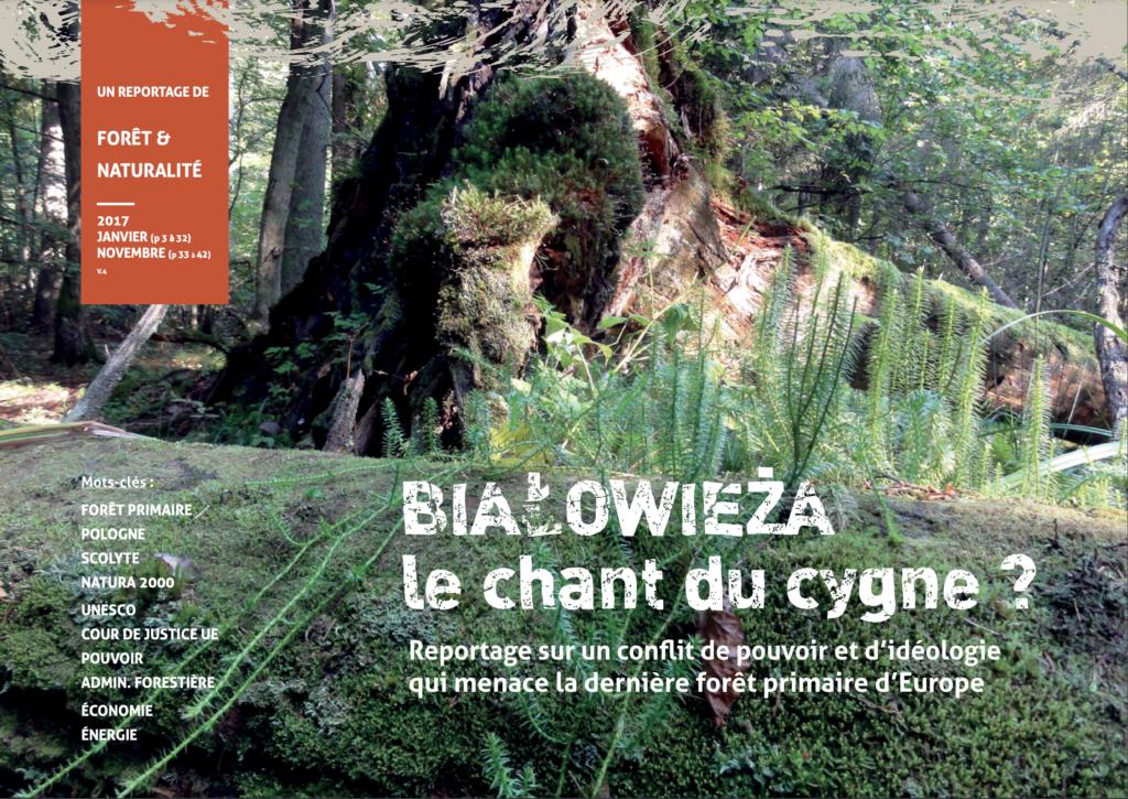 Bialowieza - reportage écrit pour la préservation de la forêt