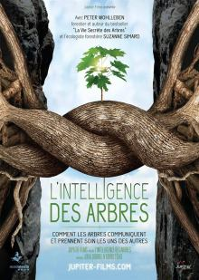 Conférence L'intelligence des arbres