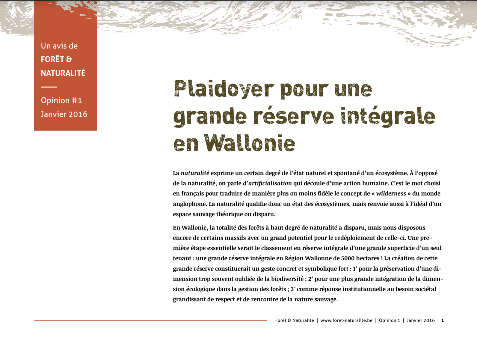 Plaidoyer pour une grande réserve intégrale en Wallonie