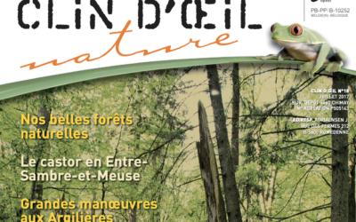 Clin d'œil – Nos belles forêts …